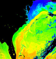 Gulf Stream going past the East Coast