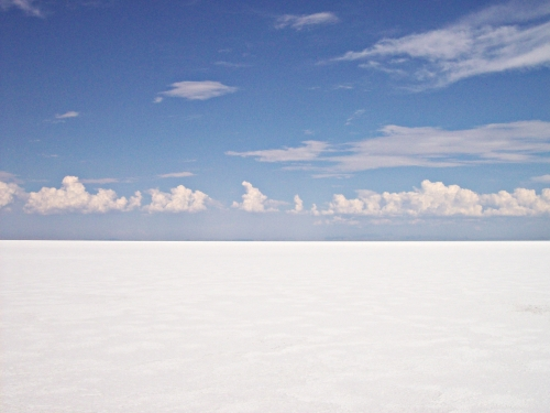 White as far as you can see…